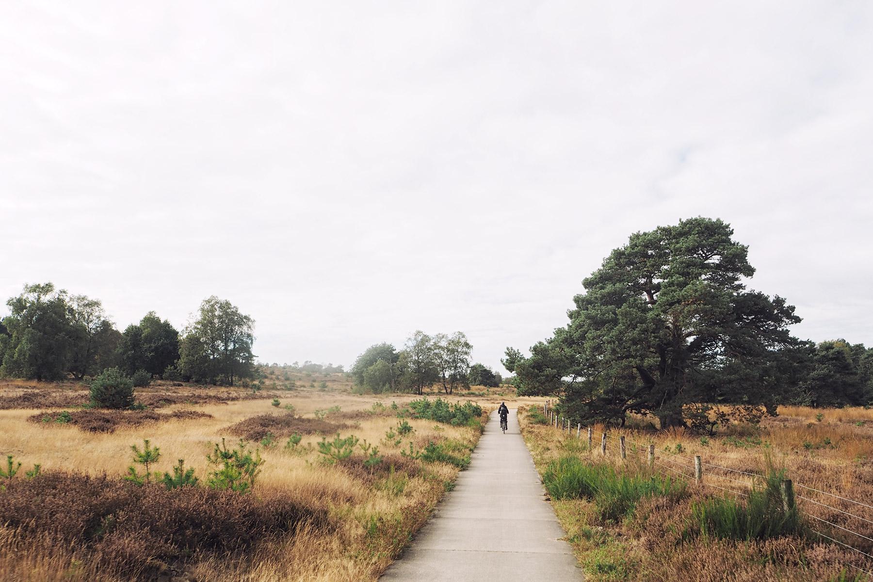 Ein Sonntag in Arnheim - Travelisto - Familien-Reiseblog