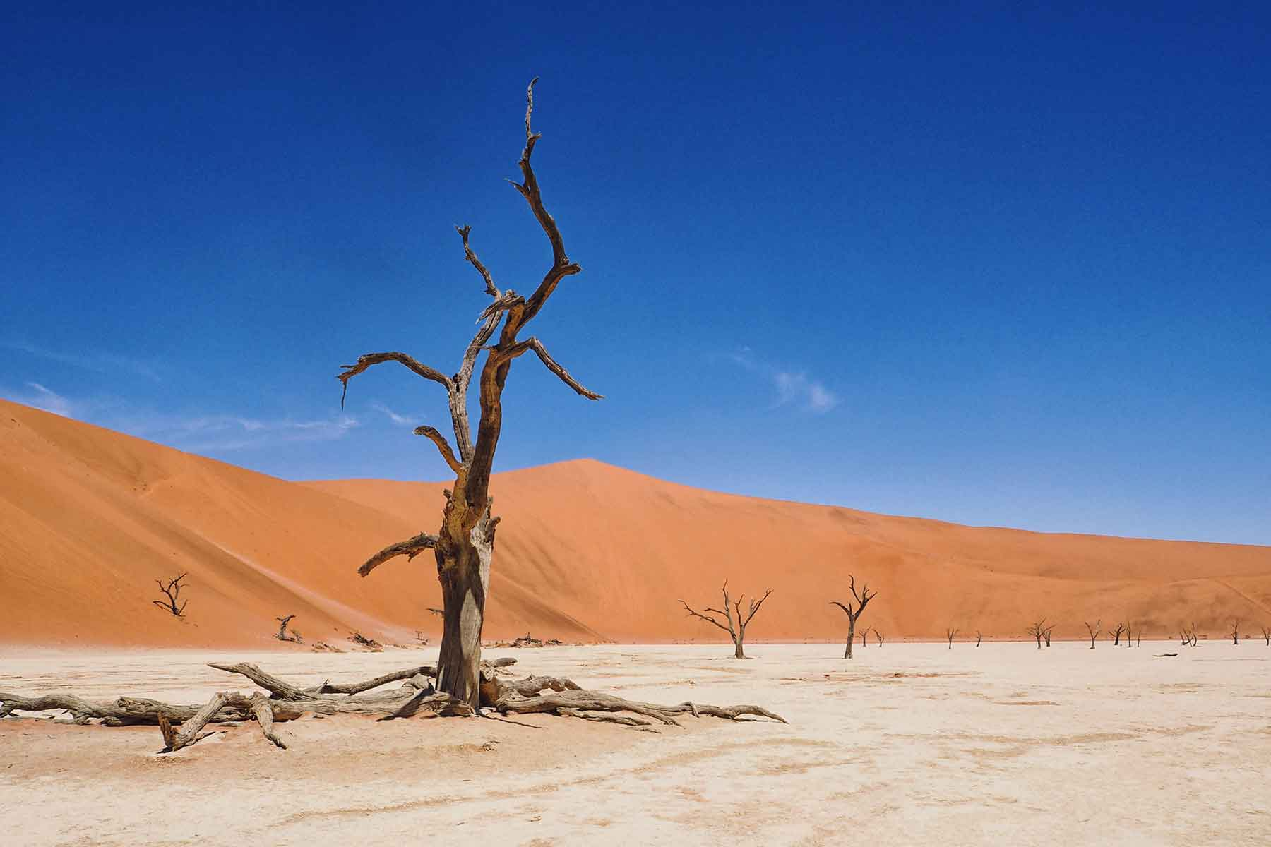 Namibia mit Kindern - cover