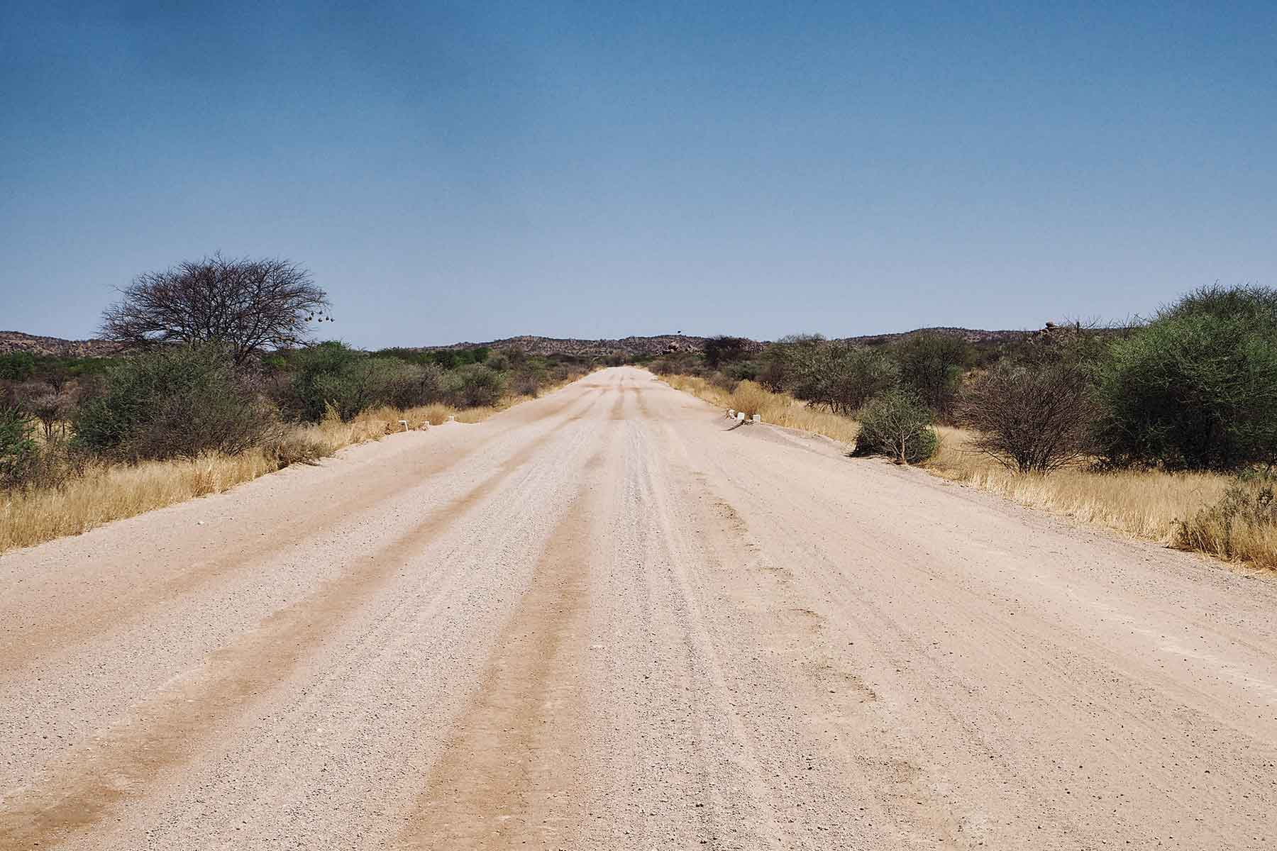 Tiere beobachten im Etosha Nationalpark